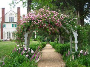 Chiêm Ngưỡng Những Cánh Cổng Nhà Tràn Ngập Hoa Hồng